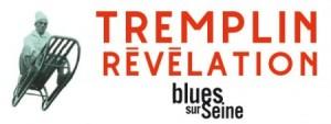 l_logo-tremplin-2016